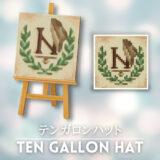 テンガロンハット [Ten Gallon Hat]【あつ森マイデザ】
